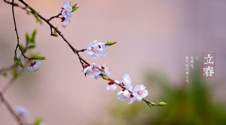 立春了,易达库房重型货架厂家和大家一样期待春暖花开【易达货架】