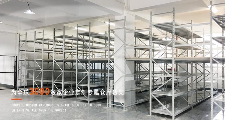 3000+仓储货架案例